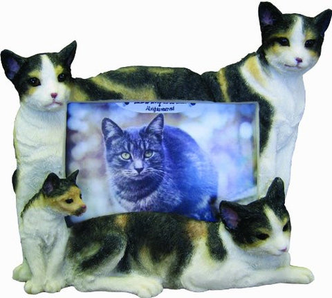 E&S Pets 35297-9 Large Cat Frames
