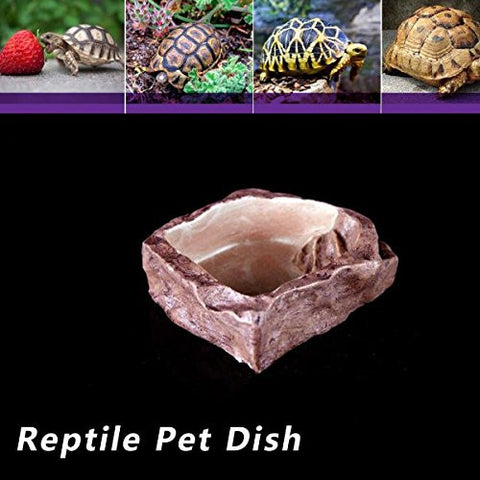 Reptile Food Water Dish Bowl Feeder Accessories Crocks Pet Reptile Product Decor For Terrarium