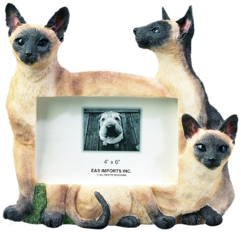 E&S Pets 35297-6 Large Cat Frames