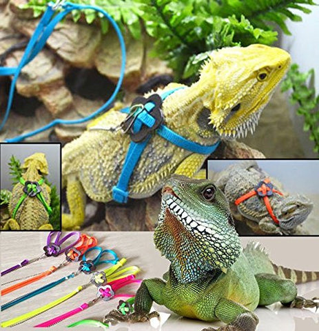Generic Adjustable Reptile Lizard Harness Leash Pet Leash