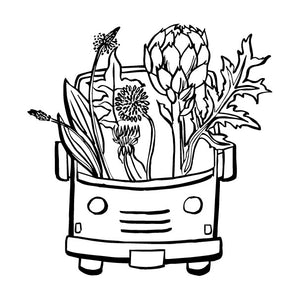 The Botanical Bus: Bilingual Mobile Herb Clinic