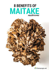 benefits of maitake mushrooms