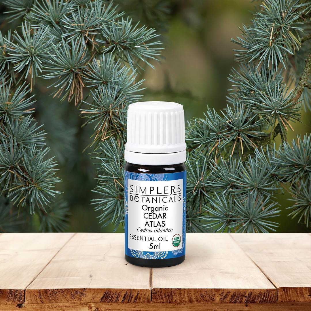 Cedar Atlas Essential Oil, Organic