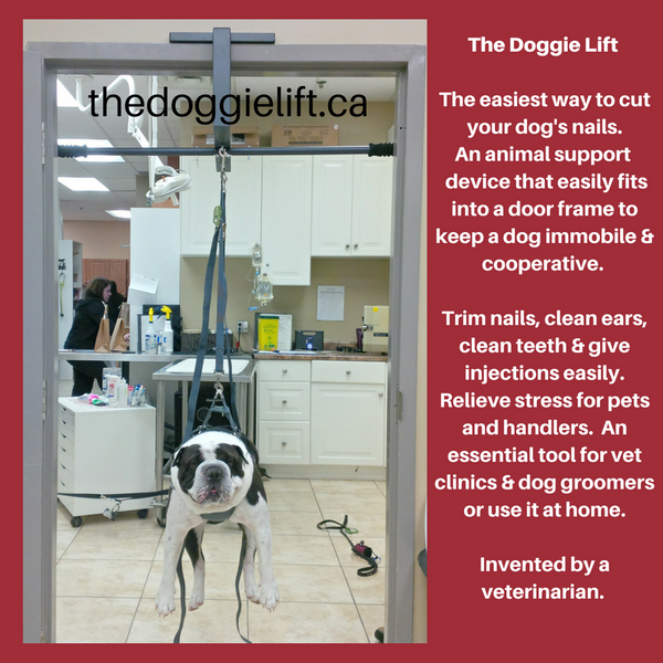 The doggie Lift is a device to safely lift your dog for easy nail trims and grooming, dog sling, dog grooming