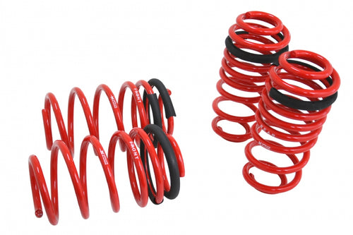 Lowering Springs - Euro-Version for Audi A3 Wagon 06-13 -