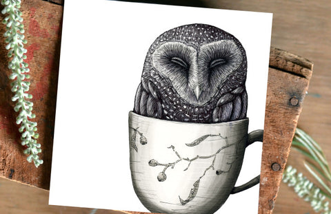 owl illustration by Renee Treml, Surf Coast Arts Trail, illustrator artist