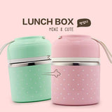 Thermal Compartment Lunch Box