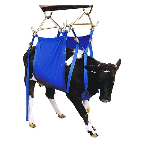Coburn XL Daisy Heavy Duty Cow Lifter