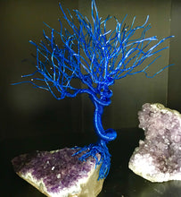* Tree of life - Rock