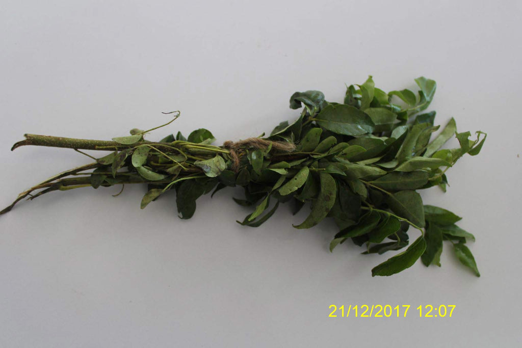 Refresh Bag test result of Curry leaves on 2nd Day