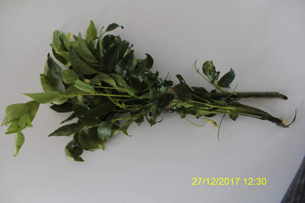 Refresh Bag test result of Curry leaves on 6th Day