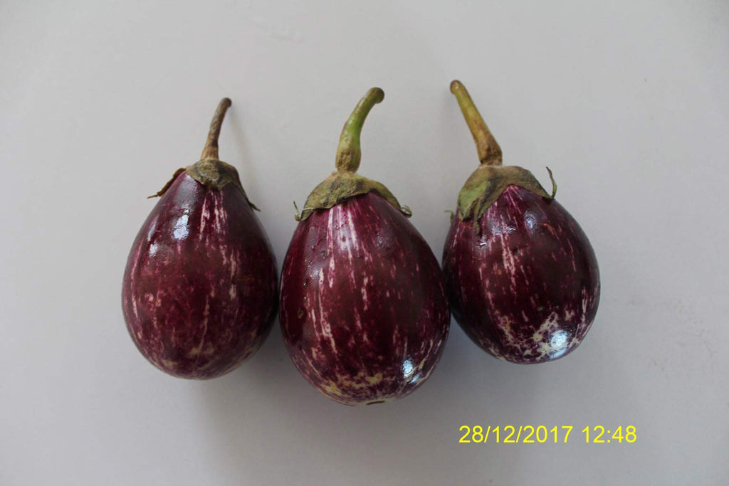 Refresh Bag test result of Brinjal on7th Day