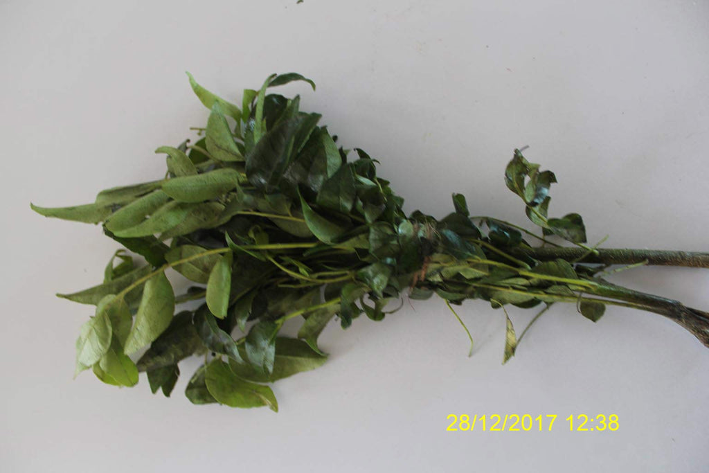 Refresh Bag test result of Curry leaves on 7th Day