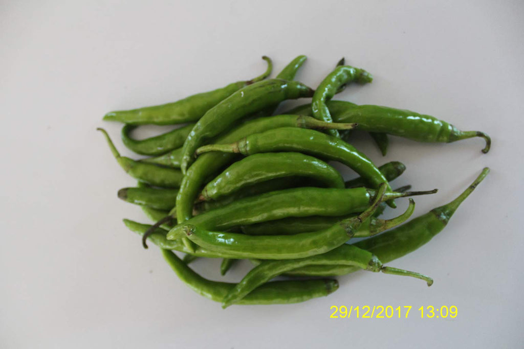 Refresh Bag test result of Chilies on 7th Day