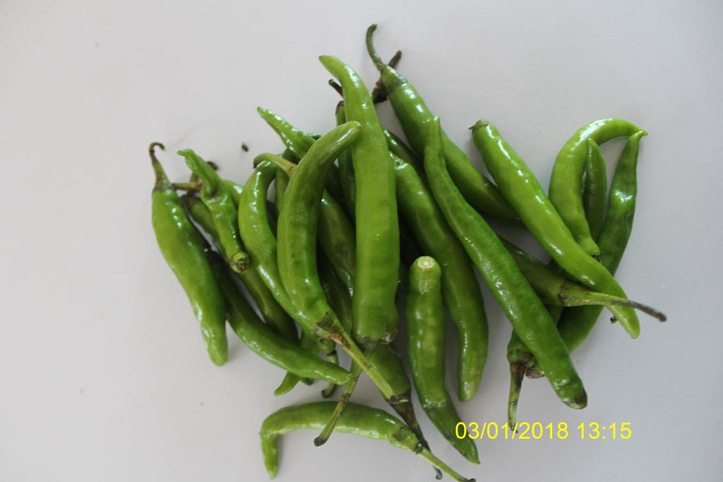 Refresh Bag test result of Chilies on 9th Day