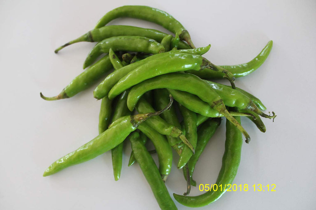 Refresh Bag test result of Chilies on 10th day