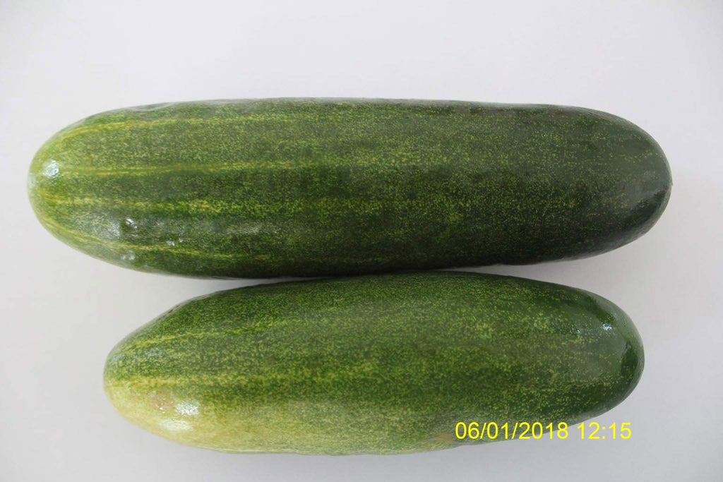 Refresh Bag test result of Cucumber on 7th Day