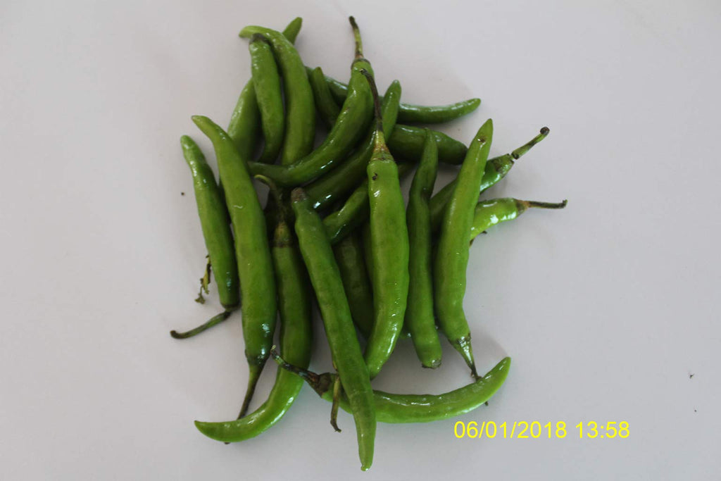 Refresh Bag test result of Chilies on 11th Day