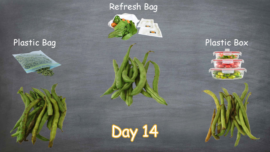 Refresh bag test result