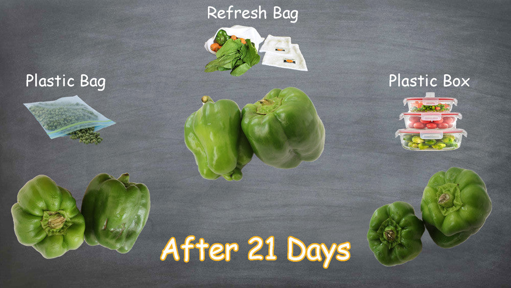 Refresh bag results