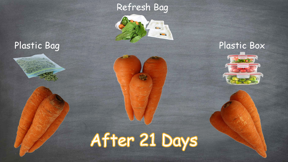 Refresh bag online