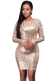 Champagne Long Sleeves/Open Back Sequin Dress