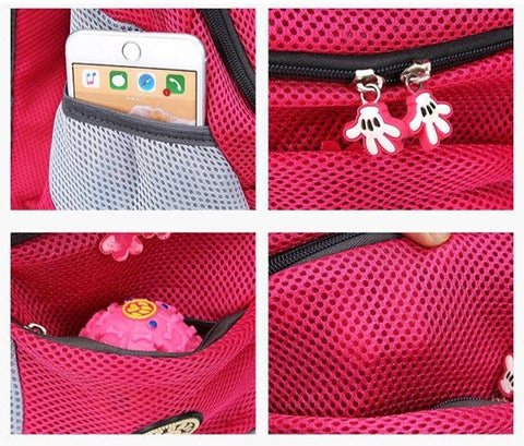carryme portable pet carrier