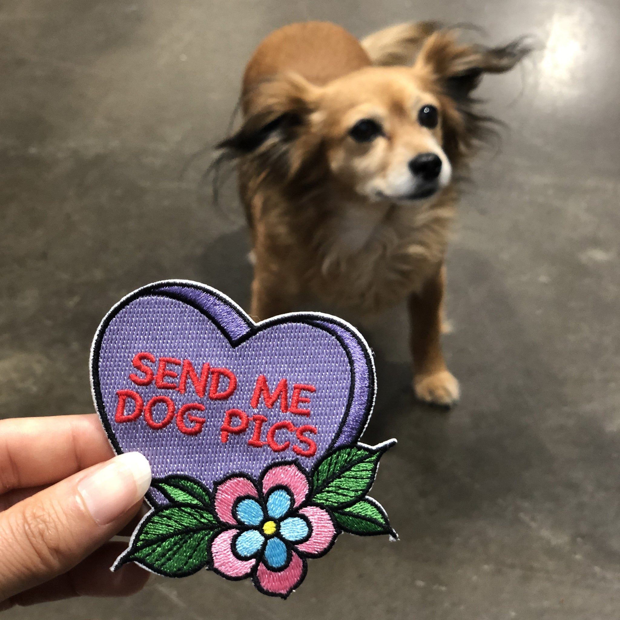 Send Me Dog Pics - Patch