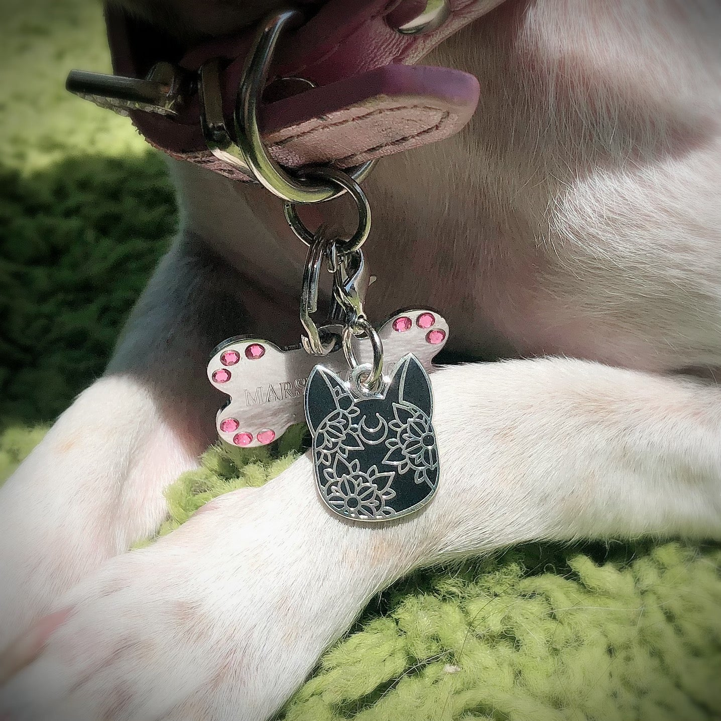 Moon Cat - Pet Collar Charm