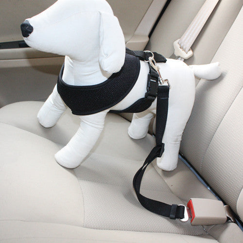 Dog Travel Seat Belt