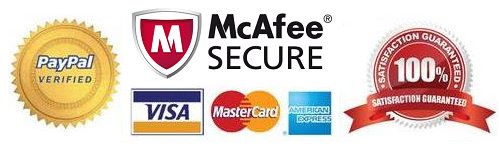 payments securely processed