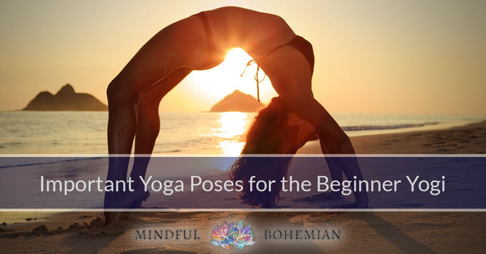 Important Yoga Poses For The Beginner Yogi