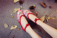 Sheer Pointed Floral Shoes