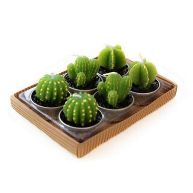 Succulent Cactus Candles,zen den,[product_vender],Mindful Bohemian