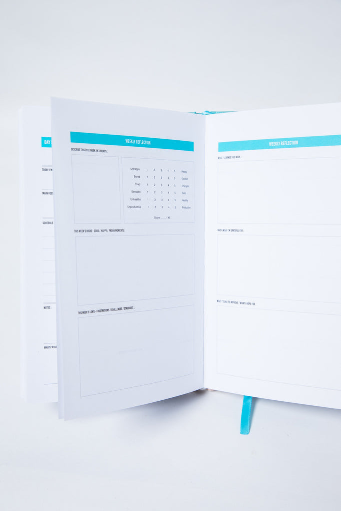 The 100-Day Planner | Mint & Cream
