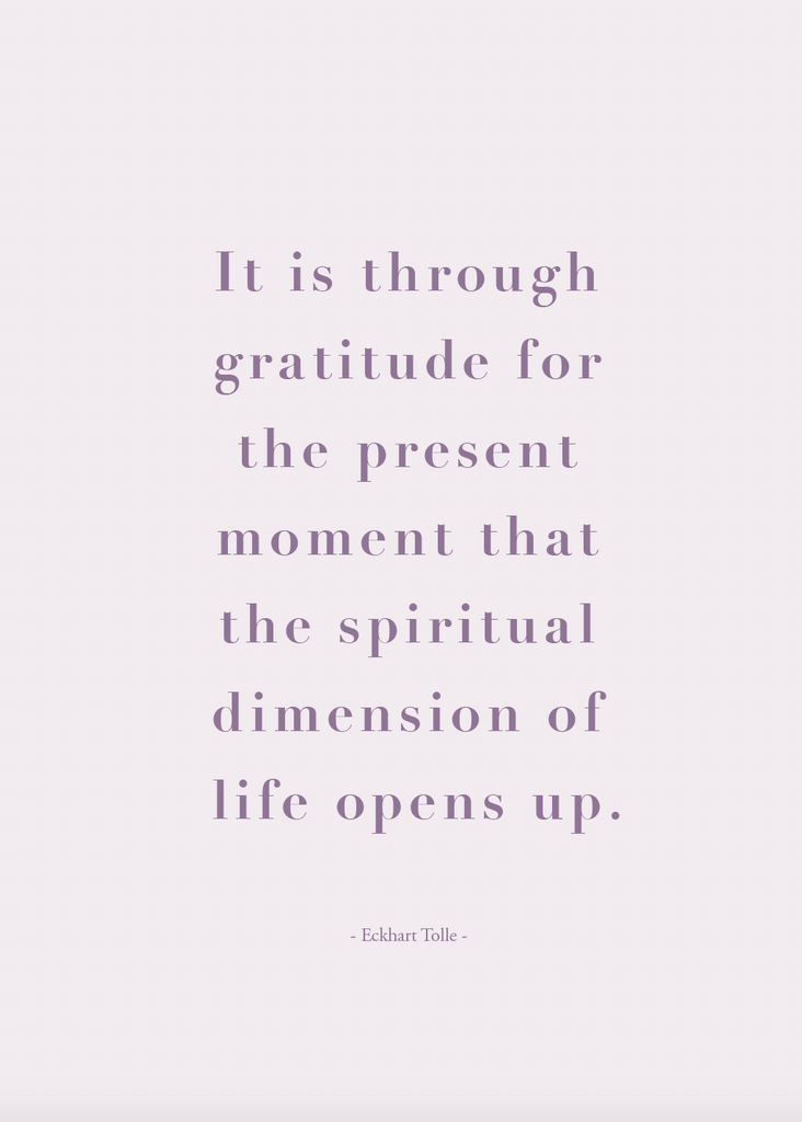 Gratitude e-Journal - The Happiness Planner®