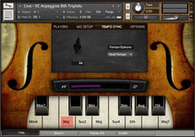 SPIRITOSO Interface 3