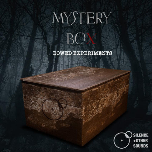 Silence + Other Sounds - Mystery Box