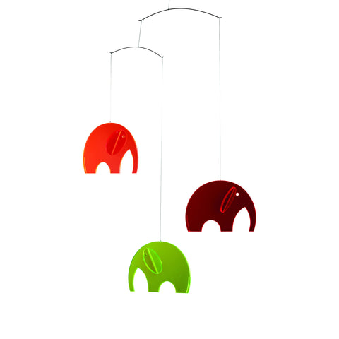 Olephants plexiglass