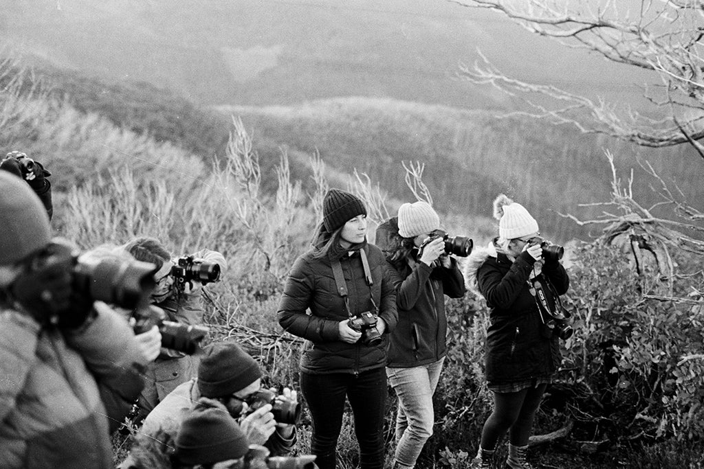 A group of photographers in Will & Bear Beanies gather around to capture the same subject