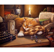 Sleepy Cat - Paint By Number kit
