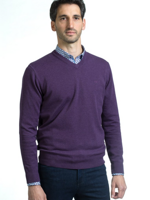 Andre Purple V-Neck Valencia Jumper