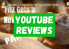 YouTube Reviews