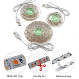 LED Grow Light Full Spectrum USB LED Strip Lights  1m 2835 Chip LED Phyto Lamps For Greenhouse Hydroponic Plant Growing