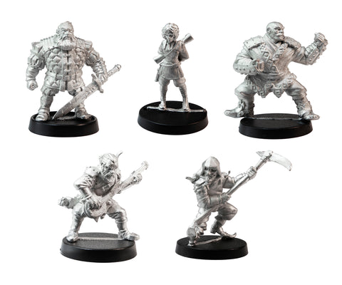 Stonehaven Adventurers 2020 - 5 Piece Lord Rhatagon's Players Set