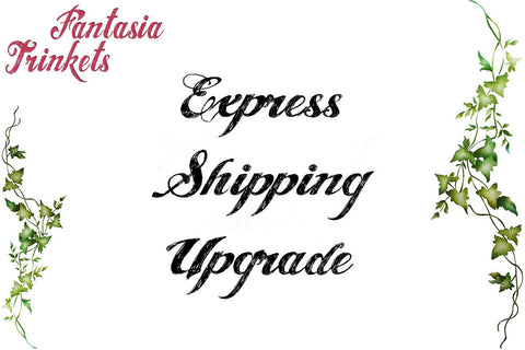 Express Shipping Upgrade + Tracking Number for Overseas Orders
