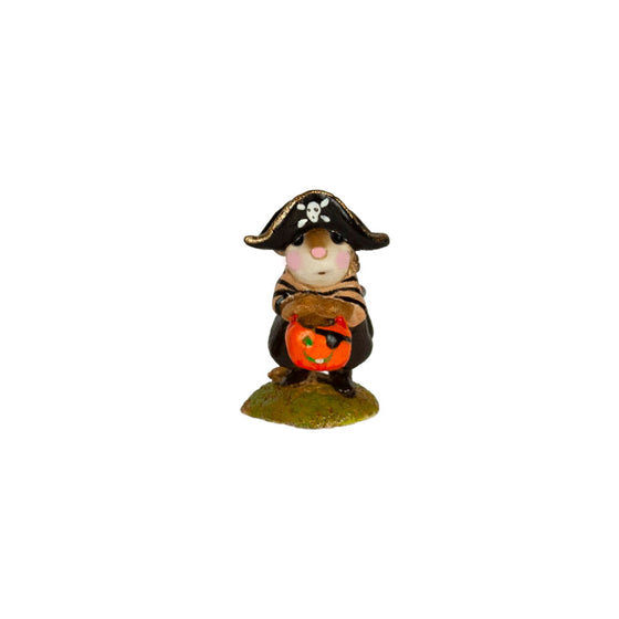 Mini Little Pirate Kidd