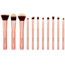 BH Chic - 14 Piece Brush Set with Cosmetic Case