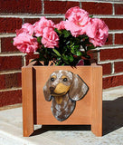 Dachshund (Smooth) Planter Box