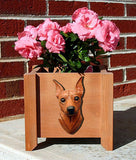 Miniature Pinscher Planter Box